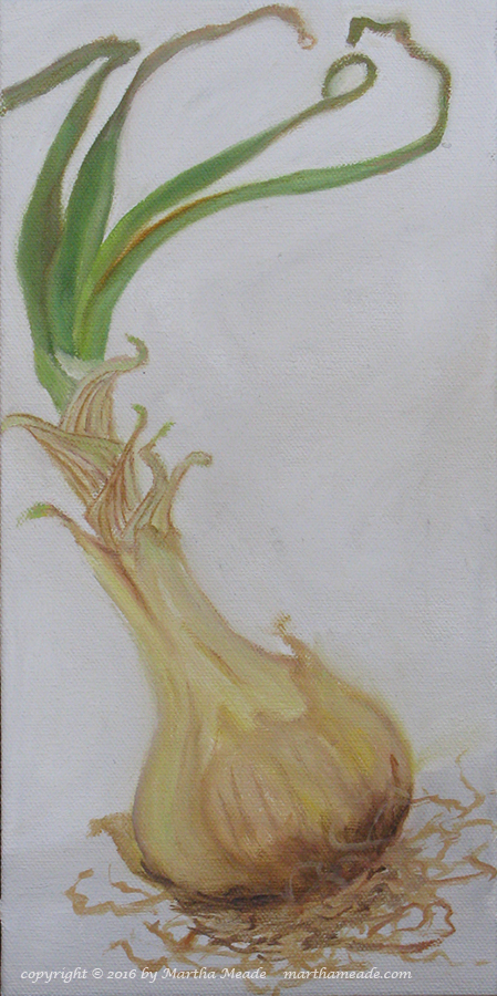 Maui Onion<br/>12 x 6 x 0.75<br/>oil on canvas